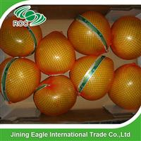 Fresh new crop honey pomelo with good quality in box